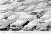 Vehicles covered with snow — Stock Photo