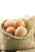 Eggs in a brown sack of vertical format — Stock Photo