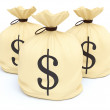 Money Bags — Stock Photo #35950065