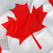 Glossy CanadiFlag — Stock Photo #38870089