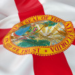 Majestic Flag of Florida — Stock Photo #39425369