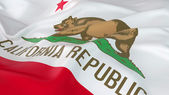 Majestic Flag of California — Стоковое фото