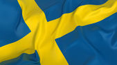 Sweden Flag — Stock Photo
