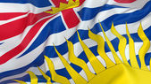 British Columbia Flag — Stock Photo