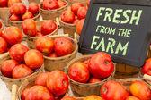 农民市场 — 图库照片