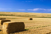 Bales of Hay — Stock Photo
