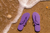 Flip Flops in the water — Stock Photo