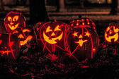 Lighted Halloween Pumpkins — Stock Photo