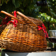 Picnic in Vineyard — Stock Photo #33707437