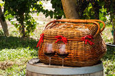 Picnic in Vineyard — Stock Photo
