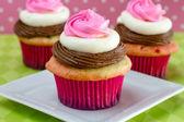 Neapolitan Cupcakes — Stock Photo