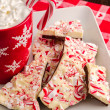 Traditional Holiday Chocolate Peppermint Bark — Stock Photo #35703037