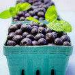 Fresh picked organic blueberries — Stock Photo #42942783