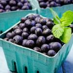 Fresh picked organic blueberries — Stock Photo #42942849