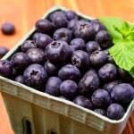 Fresh picked organic blueberries — Stock Photo #42942929