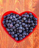 Fresh picked organic blueberries — Stock Photo