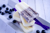 Homemade Vanilla, Blueberry and Coconut Milk Popsicles — Stockfoto