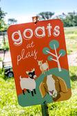 Segno di capre a giocare nel giardino — Foto Stock