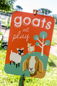 Goats at Play Sign in Garden — Stock Photo
