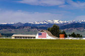 American Flag Barn in Boulder, CO — Photo