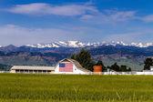 American Flag Barn in Boulder, CO — ストック写真