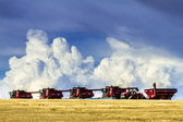 Large Red Combines Agriculture Equipment  — Stock Photo