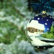 Close up of christmas ball on a fir tree branch — Stock Video #33816051