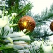 Close up of christmas ball on a fir tree branch — Stock Video #33816713