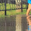 Natural Disaster: Flood In City — Stock Video