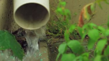 Water flows from drain — Vídeo Stock