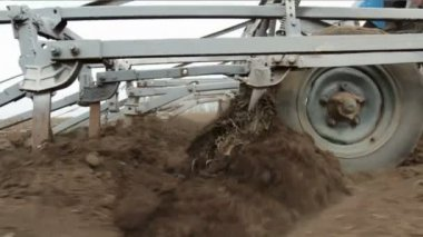 Plows Cultivate Field — Stock Video