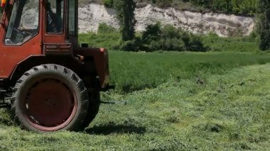 Farm Tractor Cutting Grass — Vídeo de Stock