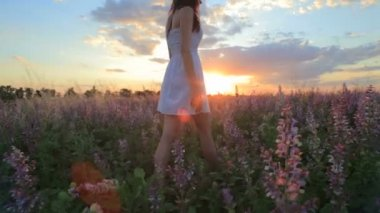 Young attractive woman in the flower meadow — Stockvideo