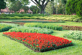 Parks Colourful Flowerbeds — Stock Photo