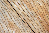 Wooden box backgrounds textures — Stock Photo