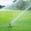 Watering in golf courseWatering turf — Stock Photo #48734259