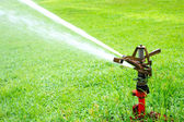 Watering in golf courseWatering turf — Photo