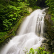 Moss Glen Falls — Stock Photo
