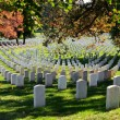 Stock Photo: Arlington National Cemetery