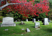Cimitero in autunno — Foto Stock