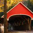 Stock Photo: Red Covered Bridge
