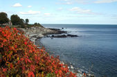 Autumn Coastline — Stock Photo