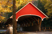 Red Covered Bridge — Stock Photo