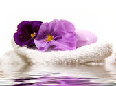 Spa Items Purple — Stock Photo