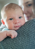 Cute newborn baby serie on grey — Stock Photo