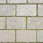 Grey walkway slabs — Stock Photo