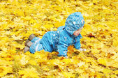 Happy baby age of 1 year creeps outdoors among yellow leaves — Stock Photo