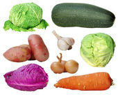 Set of vegetables — Stock fotografie