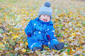 Smiling funny baby boy sitting on yellow leaves in autumn — Stock Photo