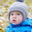 Portrait of lovely baby boy in autumn — Stock Photo